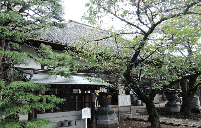 浄山寺の境内(埼玉県越谷市野島)