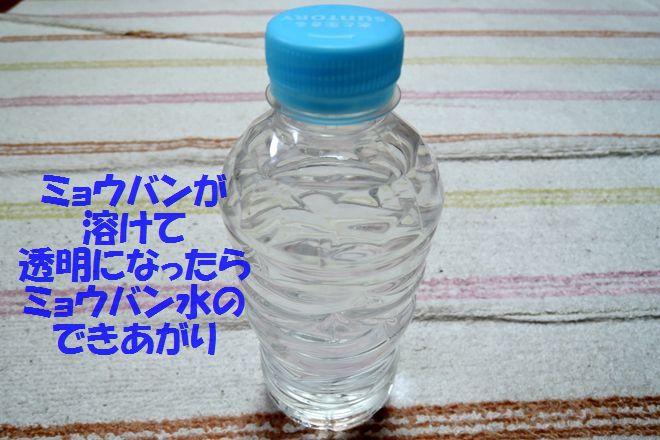 ミョウバン液