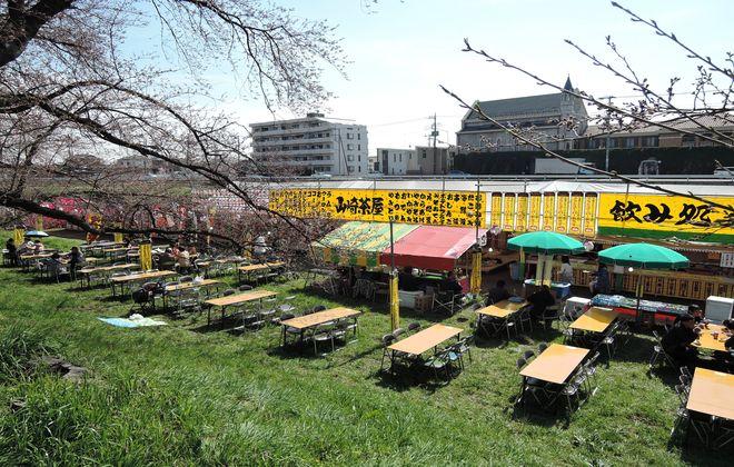 桜祭りの茶屋
