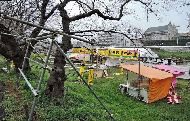 北越谷桜まつりの準備