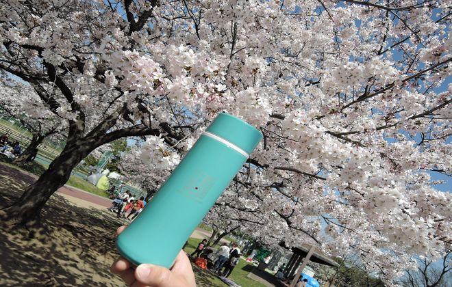 上島珈琲のスリムマグボトルにコーヒーを入れてお花見