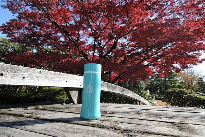 花田苑の橋