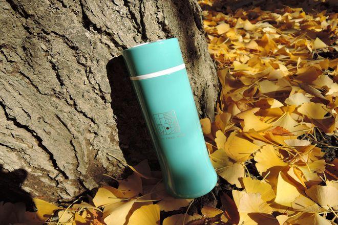 落ち葉と木漏れ日
