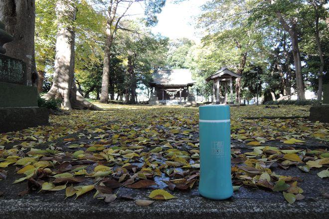 大相模久伊豆神社の境内(越谷市)