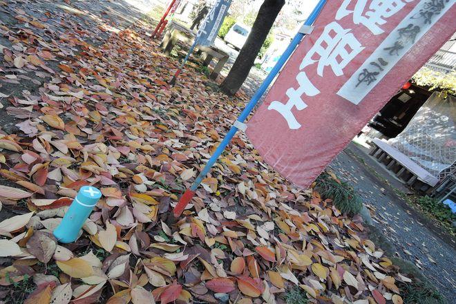 大聖寺の紅葉